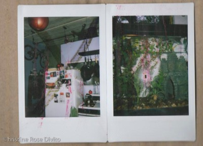 polaroid pola brooklynnew-york