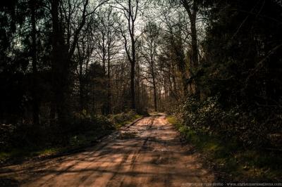 walkers©christinerosedivito-18