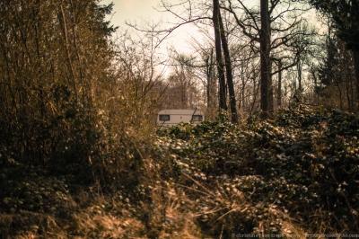 walkers©christinerosedivito-31