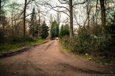 walkers©christinerosedivito-4
